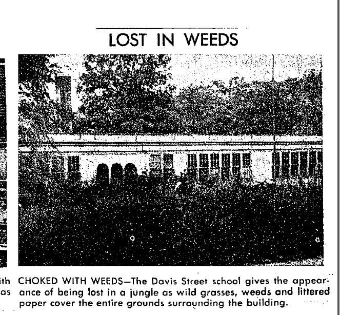 Davis Street School Covered in Weeds 1948